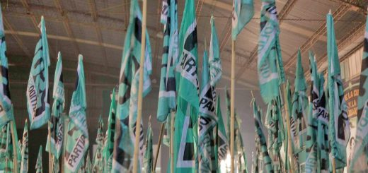 banderas PSOL